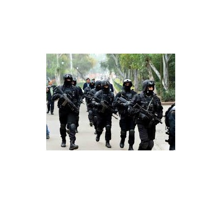 Militants fire at joint team of police, army; search operation underway