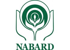 NABARD Assistant Manager Recruitment 2020 for Posts 154