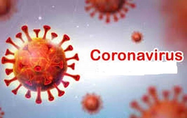 India reports single day spike of 2,63,533 COVID-19 infections, 4,329 fatalities