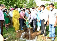 Trees are vital for the survival of our planet as trees give oxygen, improve air quality, store carbon: Div Com Jammu